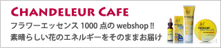 chandeleurjp Cafe